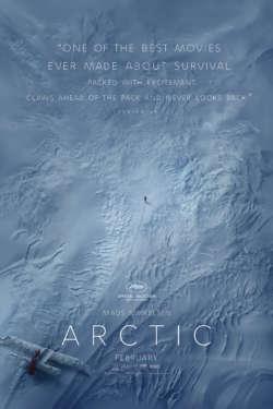 Affiche - Arctic