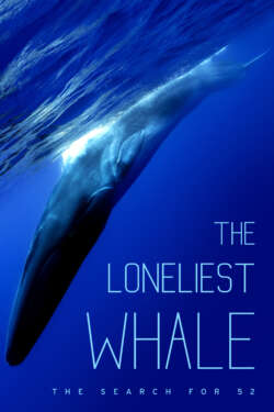 Poster - THE LONELIEST WHALE