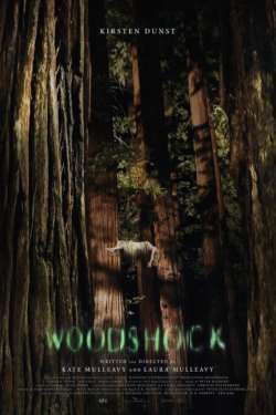 Affiche - Woodshock